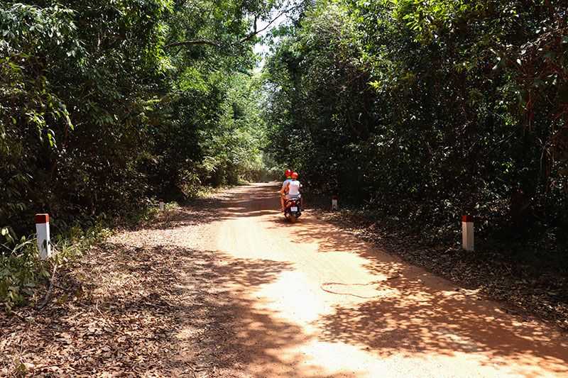 Scooter on a forest road between Starfish Beach and Ganh Dau Beach