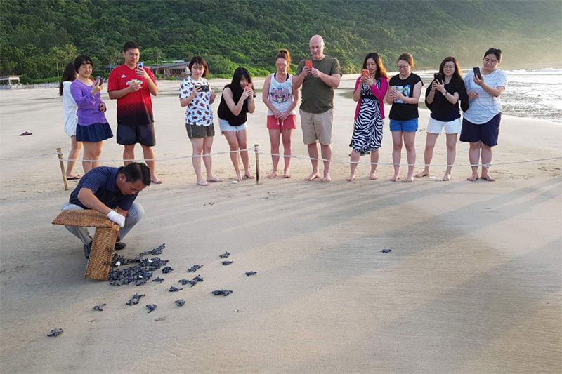 Tourists watching turtle hatchlings being released on Bay Canh Beach